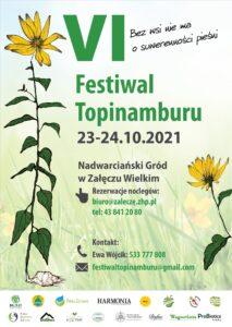 Read more about the article VI Festiwal Topinamburu